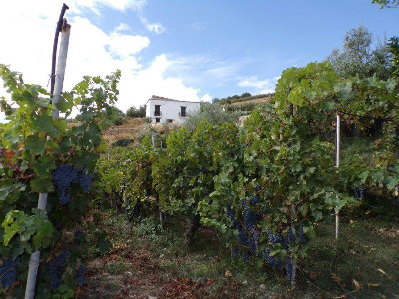 Ecologisch landhuis in Canjáyar Almeria te koop
