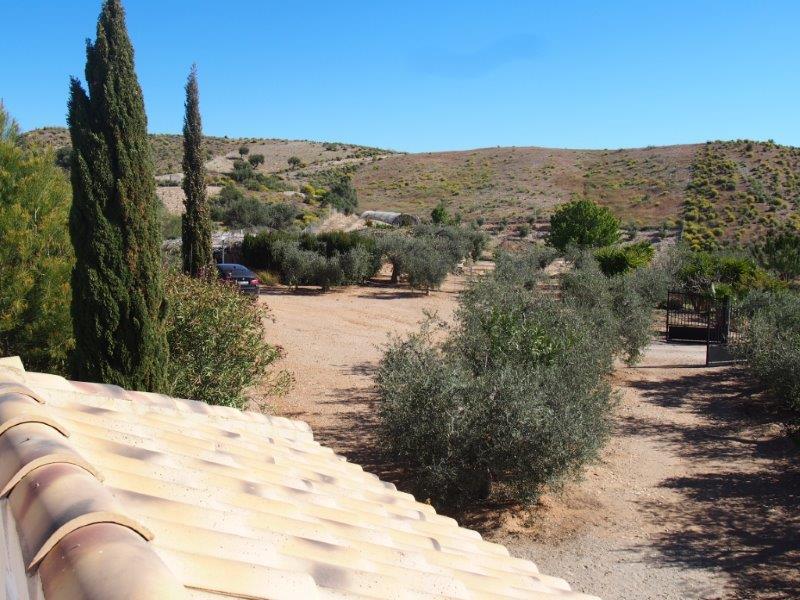 Villa te koop in Sorbas Spanje 3 slaapkamers 06